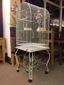 Round top small parrot or cockatiel medium bird cage.