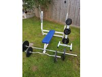 Weights bench, weights, bars & storage tree.
