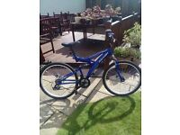 Raliegh rewind mountain bike