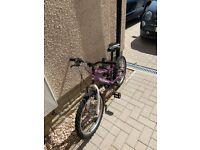 """Synergy 20"""" Girls Muddyfox Purple Mountain Bike"""