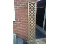 X 8 Garden Trellis's 6 foot x 1 foot. Very good condition. Only a year old, weather treated