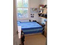 Double Bedroom - Brixton - Available for July - 7 min walk from station on quiet road