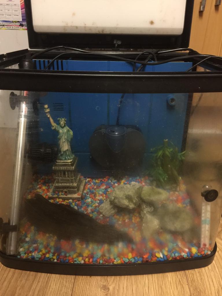 Resun aquarium fish tank - Resun Dms 400t5 60ltr Marine Tropical Tank