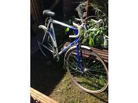 Emmelle Alpine Road Racing Bike XL Frame