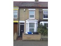 VICTORIAN BAY FRONTED 3 BED TERRACE - OWN BISECTED GARDEN
