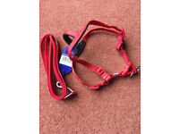 DOG HARNESS & LEAD FOR SMALL DOG