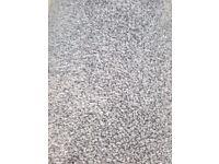 13'*10' Carpet remnant