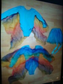 Costume age 5 and 6 (x2) items. with Wings and Skirts