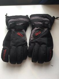 White Rock Ski Gloves (Medium)