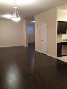 Luxury 1+Den - 1241 Sq.Ft!  In-suite laundry, 9 ft. ceilings Kitchener / Waterloo Kitchener Area image 12