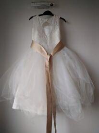 Toddler Jjshouse Bridesmaid dress 3-4 year old