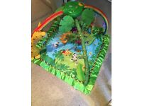 Safari play gym