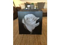 Small black and white rose canvas print picture