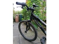 Black bike with lightening detail