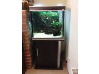 Fish Tanks/Aquariums - Aqua One x 2