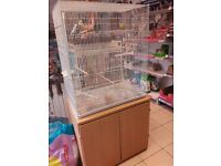 Budgies and large cage and stand sack of seed seed