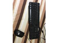 Dell keyboard & Logitech mouse