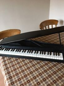 Korg Micro piano. Excellent condition, Natural Touch mini keyboard is compact and responsive £220