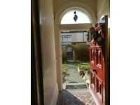 Fully furnished room in large warm and friendly house share in quiet lane