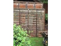 8 x 1 year old featheredge fence panels. 6x 6x6, 2x 5x6.
