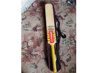 Gray nicolls crciket bat