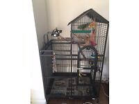 Large Parrot Cage (assemblable) + Accessories for Sale
