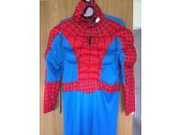 Spider-Man fancy dress