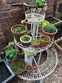Shabby Chic garden plant stand