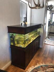 Solid Aqua Oak Aquarium Fish Tank 150cm 310L 5 Ft