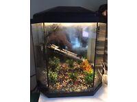 Fish Tank 25Litre