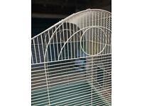 Large metal birdcage