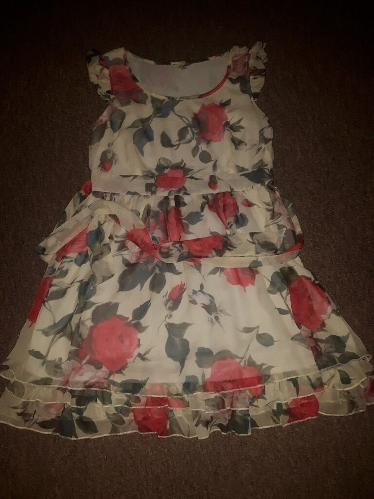 'Butterflies' red rose pattern dress, size large