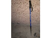 Outdoor Hiking / Tecking stick - used