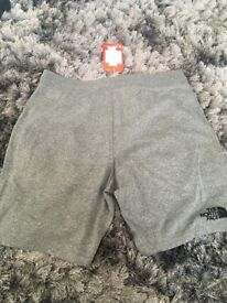 New The North Face grey shorts Large with Tags