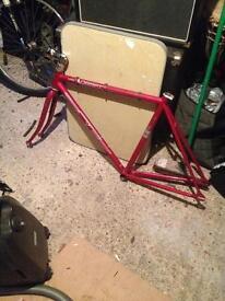 Fixed gear frame 52cm
