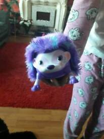 Zoomer hedgehog