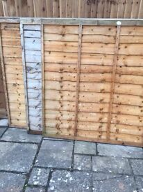 6 TAFS Fence Panels 6x5ft £10 each