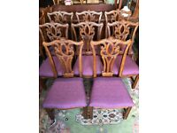 8 Dining Chairs Antique Georgian Chippendale Style Chairs - Delivery Available