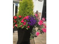 Garden pots and baskets made to order