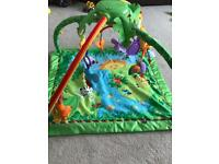 Fisher Price Baby Gym/ Playmat