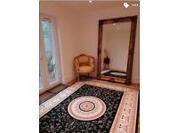 Huge new rug