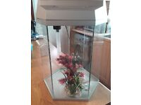"SILVER "" HEXAGON"" AQUARIUM/FISH TANK/AQUARIUM"