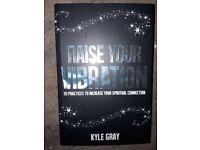 RAISE YOUR VIBRATION (SPIRITUAL BOOK BY KYLE GRAY)