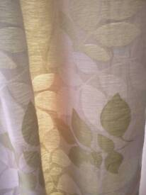 Green and cream curtains