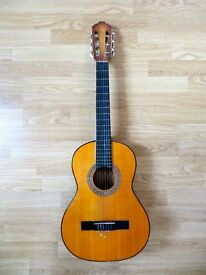 Acoustic Beginner's Guitar