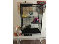 Rat cage (also ferret, chinchilla etc)