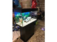 125l Juwel fish tank full set up with stand heater 2 x light filter gravel ornament all work in pic