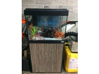 Fish Tank (Free delivery anywhere in Fife)