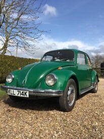VW Beetle classic Green