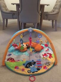 Fisher-price Playmat / Activity Gym